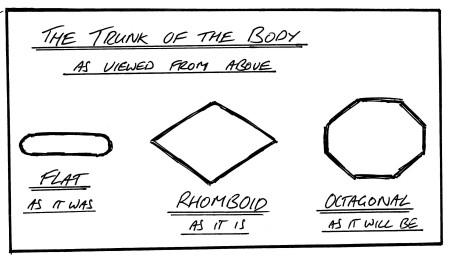 rhomboid-1